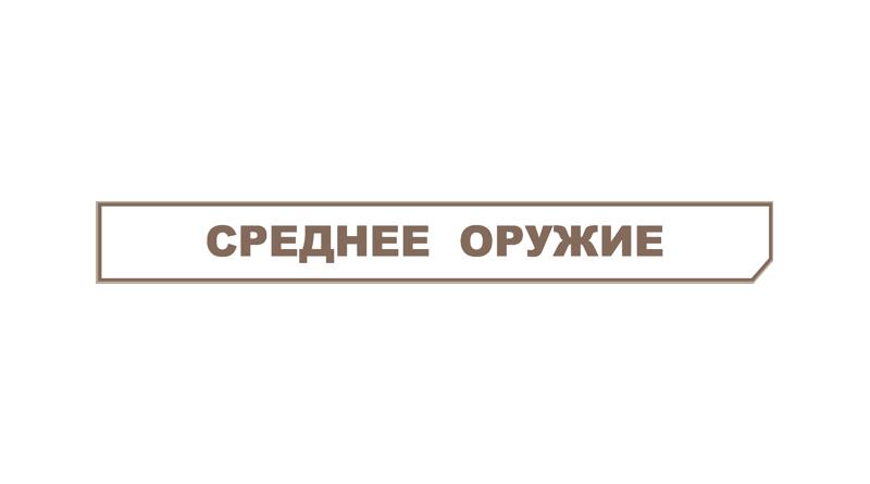 среднее оружие метро 2033 вк