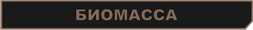 босс биомасса метро 2033 вк