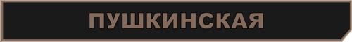 станция пушкинская метро 2033 вк