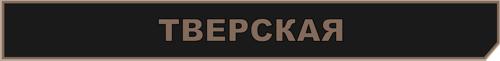 станция тверская метро 2033 вк